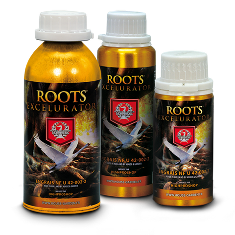 Roots Excelurator | House & Garden | Hydroponics r us