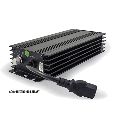 lumii black digital ballast
