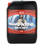 Shogun Active Boost 25L