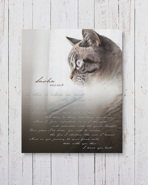 Personalized Cat Memorial Photo by Transit Design.