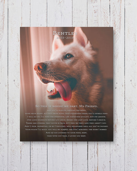 Personalized Dog Memorial Photo by Transit Design.