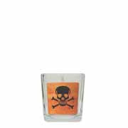 Orange Skull & Cross Bones Cube in Square Glass