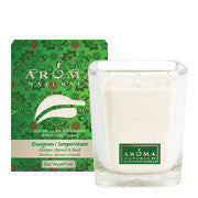 Evergreen Holiday - Soy Vegepure - Poured Square Glass