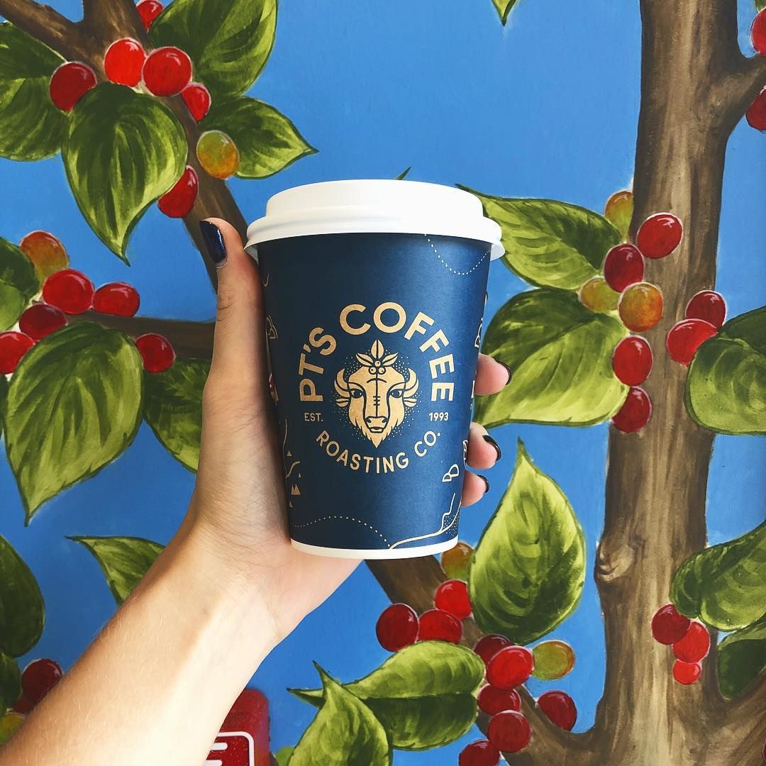 Hand holding PT's cup in front of coffee plant mural