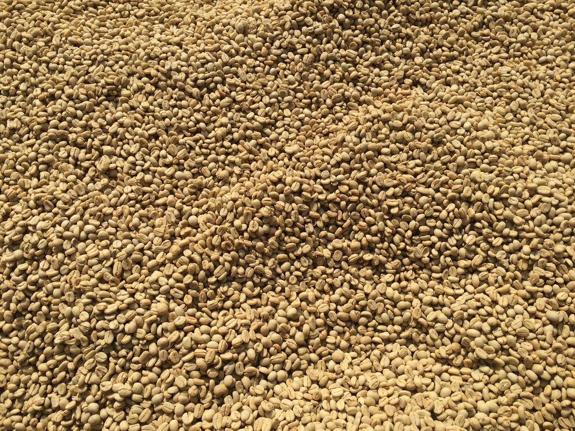 Coffee drying at Nano Challa Cooperative