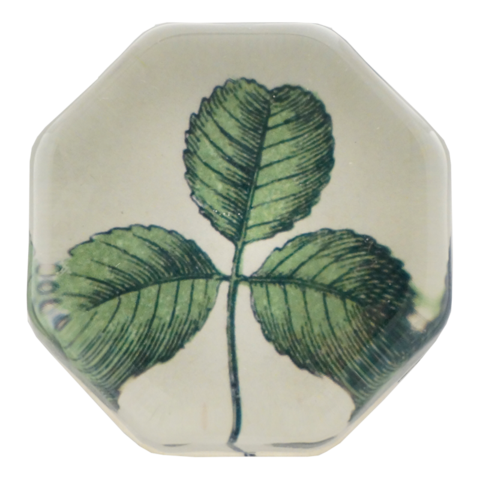 Handmade in New York, this decoupage plate features a clover illustration sourced from John Derian's extensive collection of antique and vintage prints.