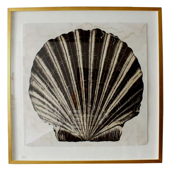 Framed in a gold gilt frame, this reproduction print of an early 20th century shell, adds a graphic note to any beach or cottage space.