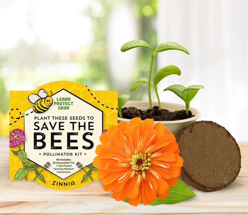 Save the Bees Pollinator Kits