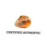 Certified Authentic Baltic Amber
