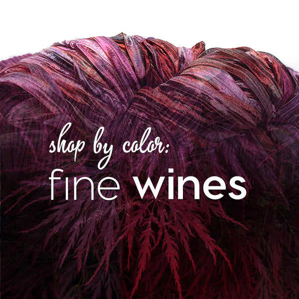 Shop by Color: Fine Wines
