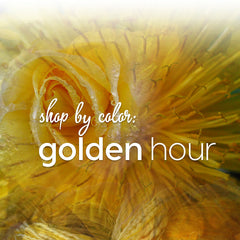 Shop by Color: Golden Hour