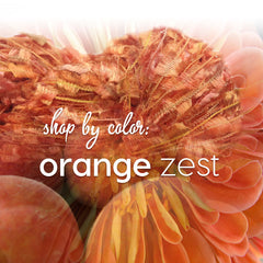 Shop by Color: Orange Zest