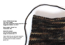 Load image into Gallery viewer, Hand-painted Superwash wool sock-weight yarn in Bronze Age (brown/bronze/charcoal/black)