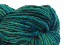 Load image into Gallery viewer, Hand-painted bulky-weight Australian Merino Wool yarn in Pacifica (deep blue-greens)