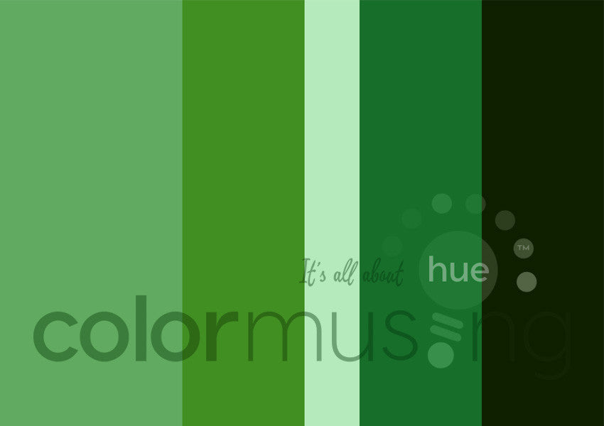 Raindrop Leaf Color Palette: Downloadable Editable PSD/JPEG Files