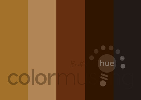 Tiger's Eye Color Palette: Downloadable Editable PSD/JPEG Files