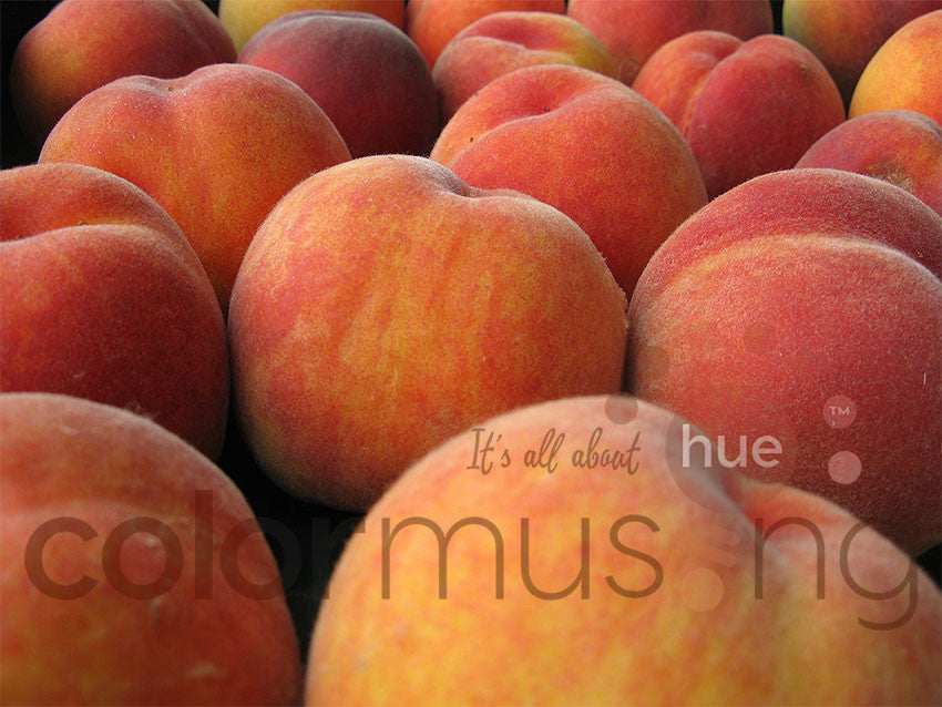 Peaches I, downloadable PSD/JPEG files, original photo (1 image, 2 formats, print/screen use)