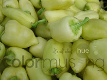 Load image into Gallery viewer, Peppers I, downloadable PSD/JPEG files, original photo (1 image, 2 formats, print/screen use)