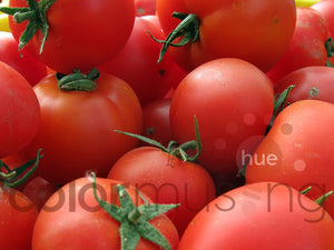 Market Tomatoes III Color Palette: Downloadable Editable PSD/JPEG Files