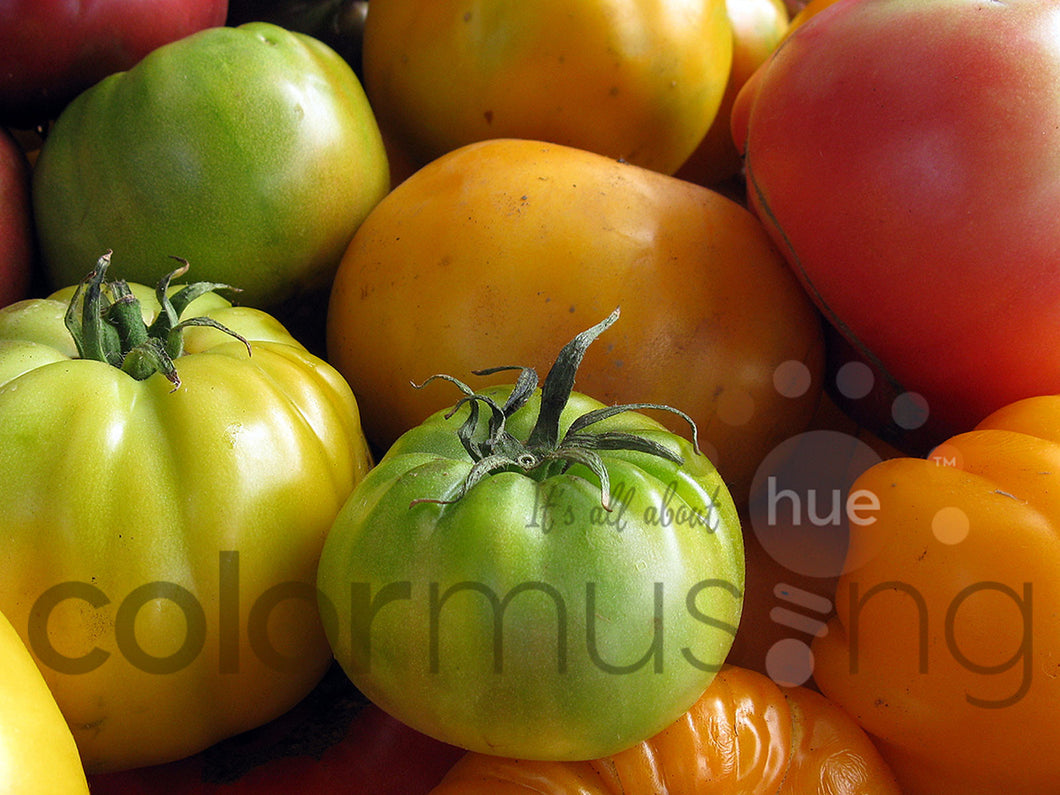Market Tomatoes, downloadable PSD/JPEG collection of 3 original photos (print/screen use)