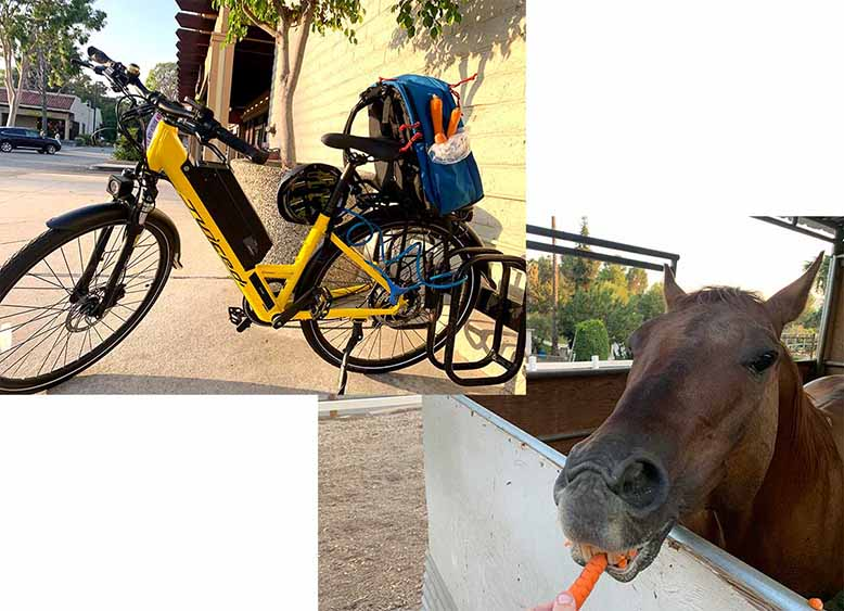 Juiced Bikes 15Ah Real World Range Test Carrots and CrossCurrents