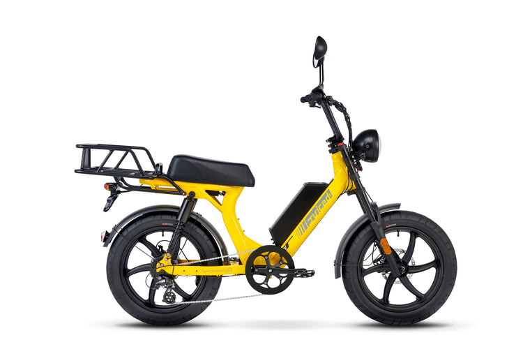 HyperScorpion Express: Electric Delivery Bike