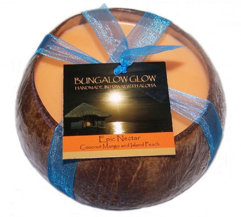 Bubble Shack Hawaii - Bungalow Glow Epic Nectar Coconut Shell Soy Candle