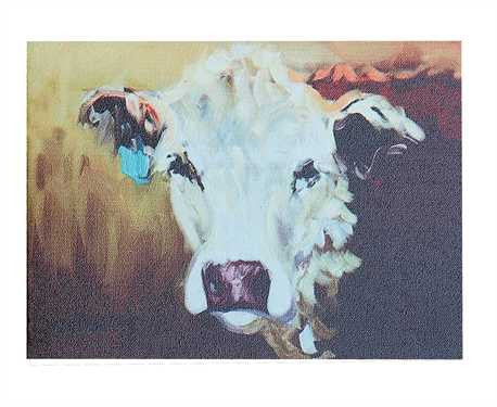 Hereford Cow Canvas