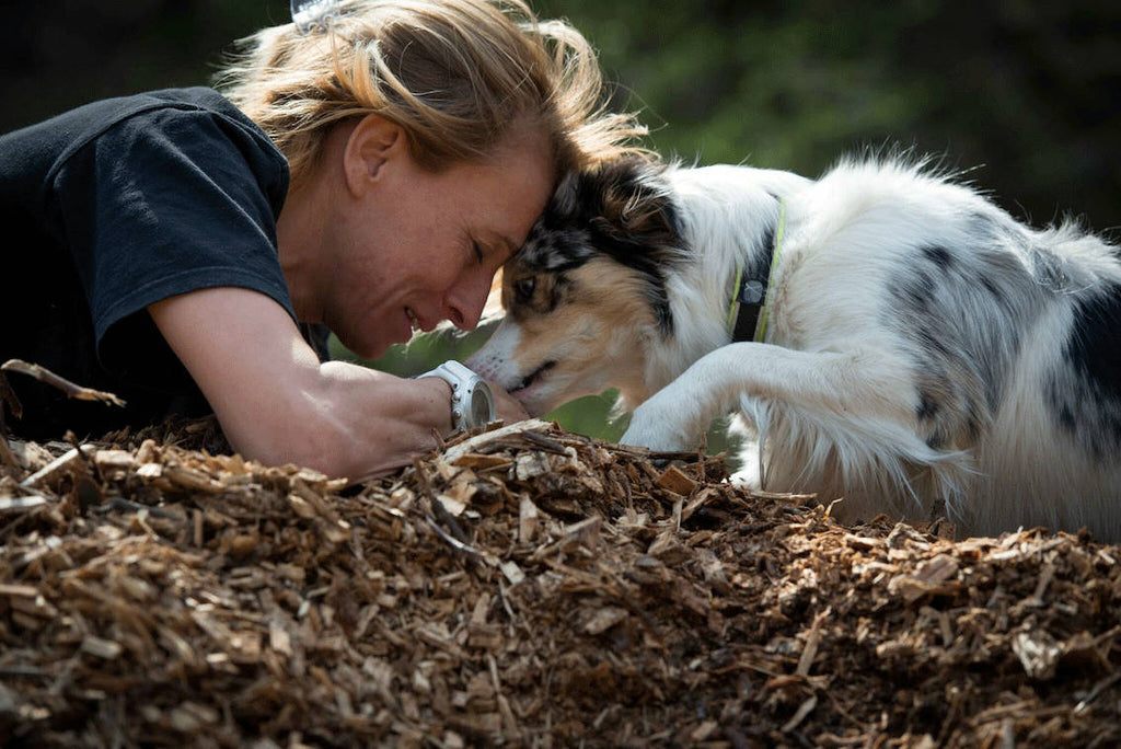 The Best Ways To Bond With My Dog - Our top 10