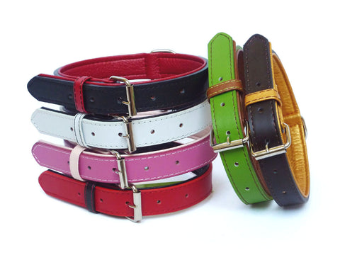 leather dog collar and lead set fusion