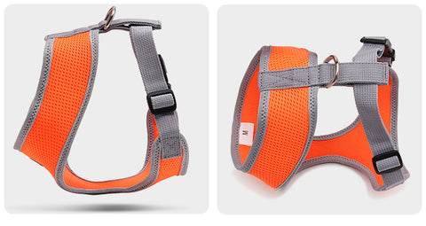 orange mesh harness for puppy or small dog