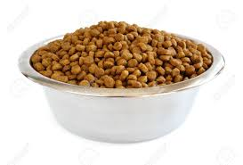 dry-dog-food-in-bowl