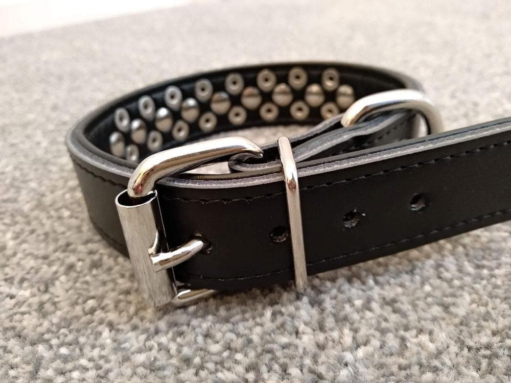 Leather Studded Dog Collar | Padded | Blue | Brown | Black | Pink | Red