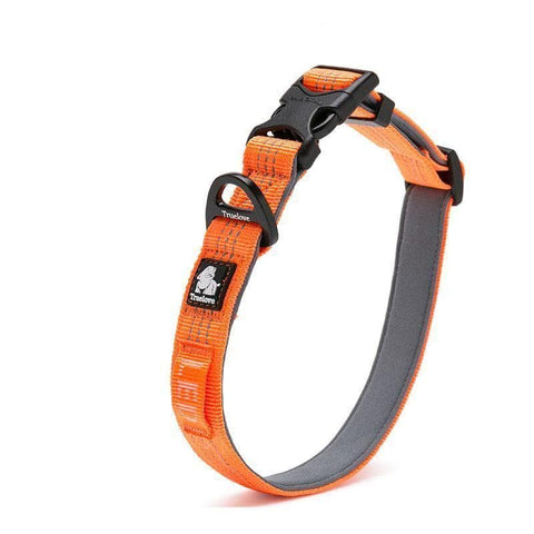 neoprene tough dog collar