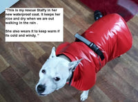 testimonial from customer and red waterproof dog coat