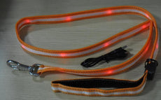 Flashing LED Dog Lead | High Viz Dog Lead