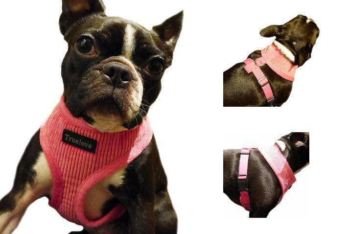 pink dog harness combined image