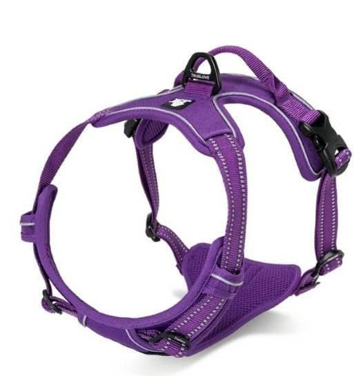 Truelove Front Clip Dog Harness | Padded | Plus Top Lead Fastening Clip | TLH5651