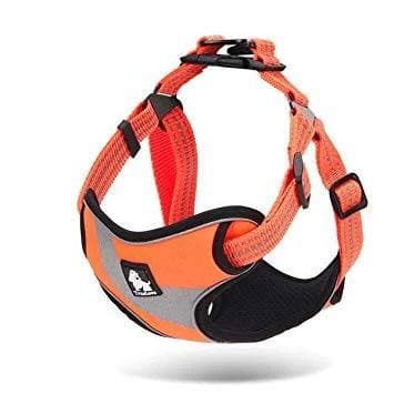 Step In Dog Harness | Truelove | UK