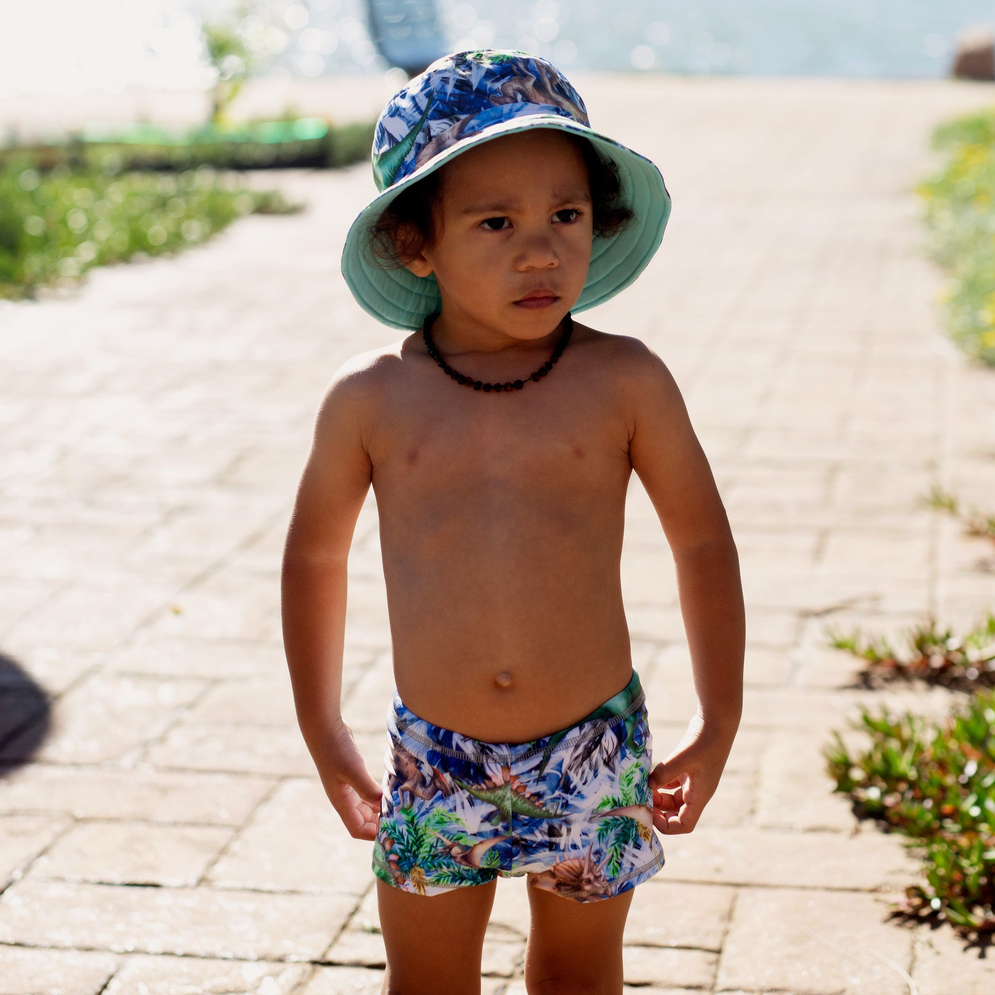 boys swim pant in dinosaur print