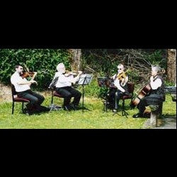 Plymouth Ensemble - Classical String Quartet - New Plymouth