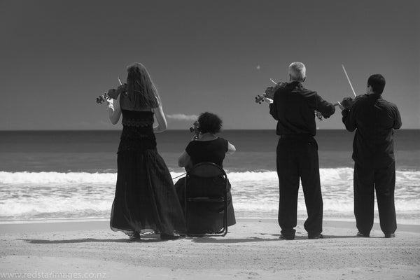 Real Strings - Classical String Group - Waiheke Island Auckland