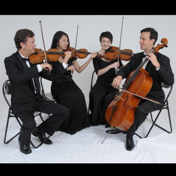 Starlight Strings - Classical String Trio or Quartet - Auckland
