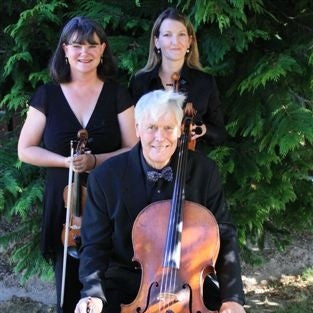 Strings Central - Classical Trio - Queenstown