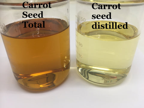 Carrot seed oil distilled and carrot seed Total