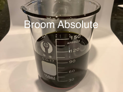 Broom Absolute