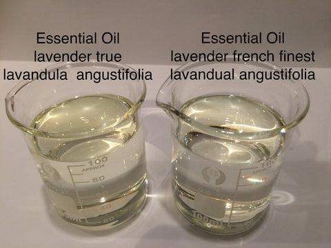 Lavender Essential Oil French Finest 40/42 <br><i><small>lavandula angustifolia</small></i></br>