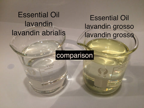 Lavandin Essential Oil France<br><i><small> lavandin abrialis</small></i></br>