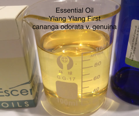 Ylang Ylang First Essential Oil <br><i><small>cananga odorata v genuina</small></i></br>