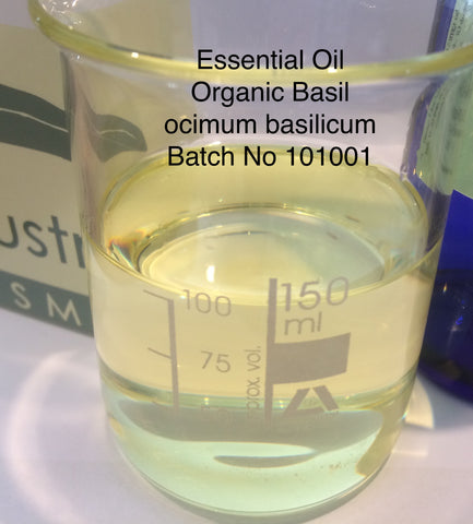 Basil Essential Oil Organic